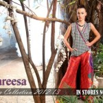 Latest Pareesa Winter Dresses For Women 2012-13 By ChenOne (2)