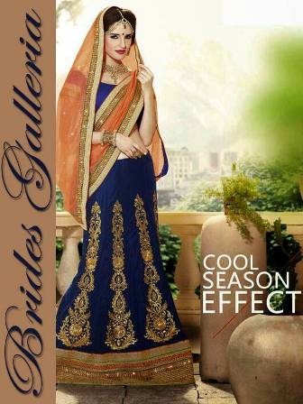 Brides Galleria Lovely Females Saree Ideas 2015 (13)