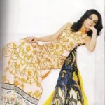 Asim jofa lawn embroidered Panel Fabric