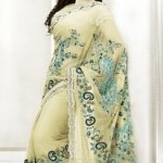 Cream net embroidered sari