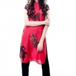 Nadya Mistry Dress Collection 2012