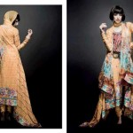 summer embroidered suits collection 2012