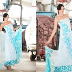 Latest lawn collection By Hira lari