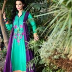 Nimsay embroidered lawn collection