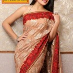 Meena Bazaar printed Bridal Saree Collection with Actress Kritika Kamra