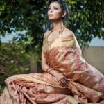 Traditional saree 2012 for women By Mansha