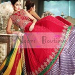 Pakistani Indian bridal mehandi dresses