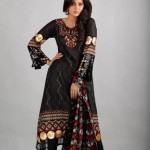 Dawood Lawns Embroidered Collection 2012 For Women (6)