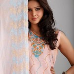 Dawood Lawns Embroidered Collection 2012 For Women (7)
