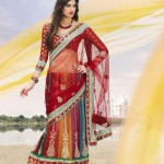 Multiple Color Gorgeous Designer Saree Collection 2012
