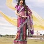 Multiple Color Gorgeous Designer Saree Collection 2013