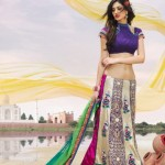 Multiple Color Gorgeous Designer Saree Collection For Bridals