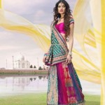 Multiple Color Gorgeous Designer banarsi Saree Collection