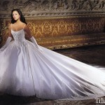 Beautiful Wedding Dress Collection For Bridals (2)