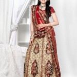 2012 Pakistani Fashion Bridal Dress collection