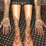Complicated Pakistani Mehndi Design 2012 Best Pattern