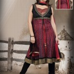 Flora Printed Net Anarkali Suit 2012