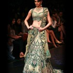 Latest & Beautiful Saree collection 2012-13 For Bridals By Brinda's (2)