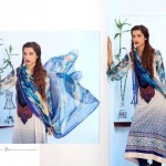 Latest Embroidered Dress Collection 2012 Feminine Designer By Shariq Textiles (1)