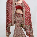 Latest Lehenga Designs Collection 2012 For Wedding