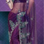 Nakshatra Designerwear Latest & Beautiful Bridal Saree Collection 2012-2013 (1)