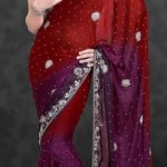 Nakshatra Designerwear Latest & Beautiful Bridal Saree Collection 2012-2013 (11)