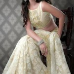Nakshatra Designerwear Latest & Beautiful Bridal Saree Collection 2012-2013 (5)