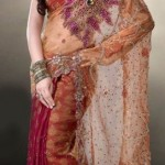 Nakshatra Designerwear Latest & Beautiful Bridal Saree Collection 2012-2013 (7)