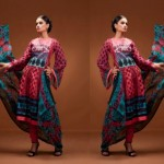 Style Embroidered Dress Collection 2012 Feminine Designer By Shariq Textiles (12)