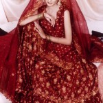 Stylish Lehenga Designs Collection 2012 For Bridals