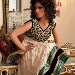 Wedding Day Bridal Dresses FallWinter Collection 2012 by Saadia Asad