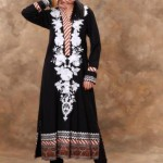 New & Beautiful Eid Dresses Winter Fall Collection 2012-13 For Women By Nimsay (5)