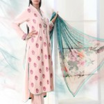New & Beautiful formal wear Eid Dress Winter Fall Collection 2012 For Women By Nimsay
