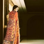 Sana and Riffat Evening Party wear Eid Dresses 2012 by Women (8)