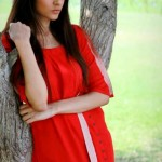Sheenz latest Party wear Winter Dress Collection 2012-2013 For Women And Girls (4)