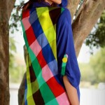 Sheenz latest Party wear Winter Dress Collection 2012-2013 For Women And Girls (7)