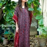 Yahsir Waheed Party wear Stitched Dresses 2012-13 for Women (8)
