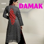 damak autumn collection 2012 for women 001