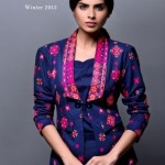 Bareeze New Winter Arrival Latest Collection 2012-2013 For Women