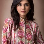 Bareeze New Winter Arrival Latest Collection 2012-2013 For Women (3)