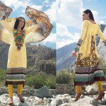 Charizma Latest Winter Dresses 2012-2013 For Women 003