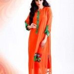 Ethnic beautiful Winter otufits New Collection 2012-13 for women (9)