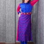 Five Star Textile Winter Dresses 2013 For Women 009