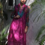 Latest Pareesa Winter Dress collection For Women 2012-13 By ChenOne (2)