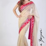 Latest Saree Arrivals 2013 By Meena Bazar 002