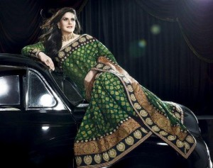 Latest Saree Collection 2012-2013 By Zarine Khan 004