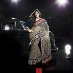 Latest Saree Collection 2012-2013 By Zarine Khan 006