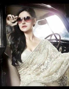 Latest Saree Collection 2012-2013 By Zarine Khan 007