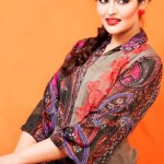 Lingofil Latest party wear winter collection 2012-13 for women (10)