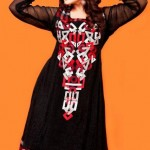 Lingofil Latest party wear winter collection 2012-13 for women (5)